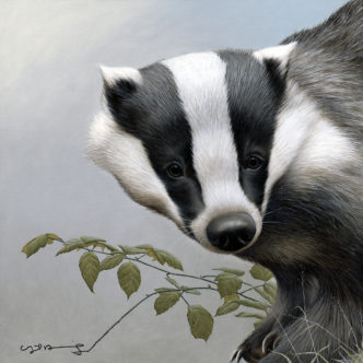 Badger Original painting