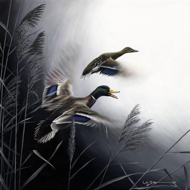 Mallard Ducks Original Oil Painting