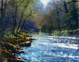 The Dart Near Holne Bridge by Richard Thorn
