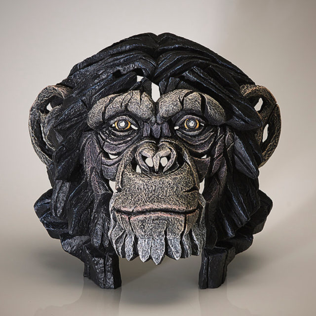 Chimpanzee Bust by Matt Buckley Edge Sculpture