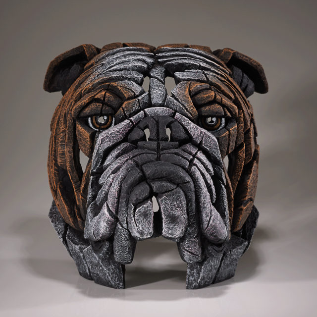 Bulldog Bust Fawn by Matt Buckley Edge Sculpture
