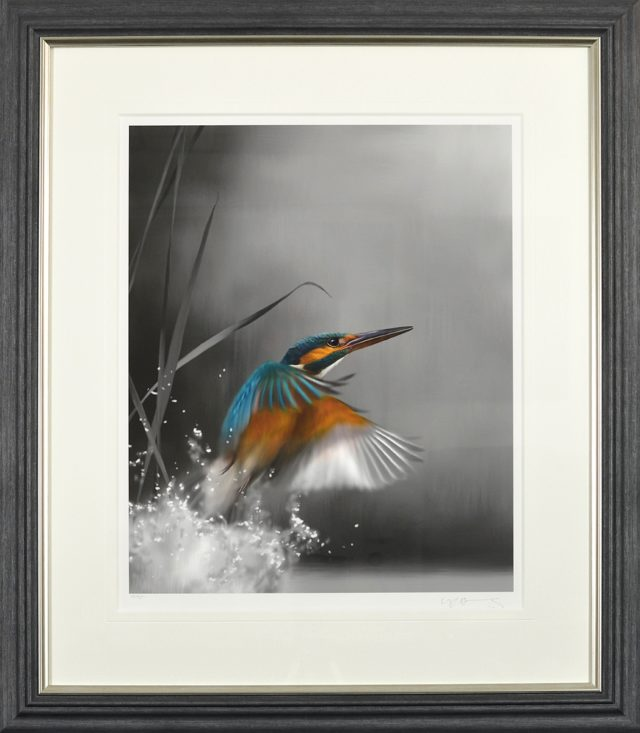 The One That Got Away Kingfisher by Nigel Hemming