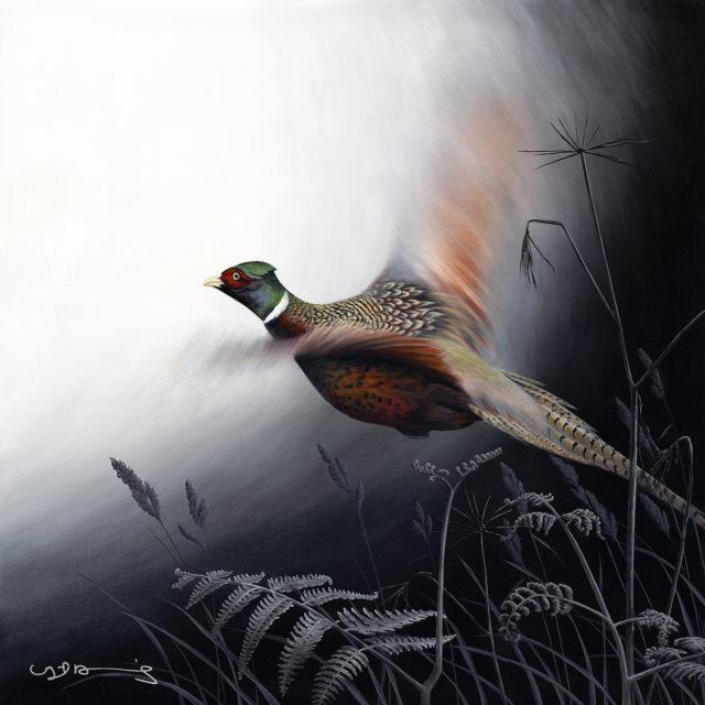Pheasant Original by Nigel Hemming
