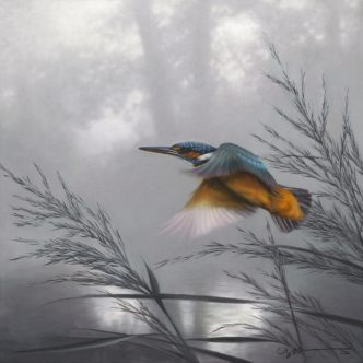 Kingfisher Taking Flight by Nigel Hemming