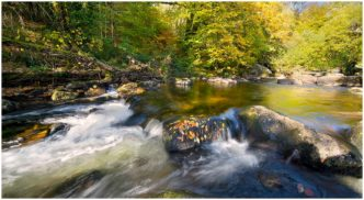 Autumn on the River - Dartmoor Framed limited edition print