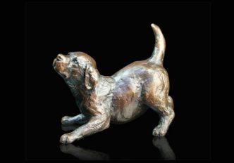 Labrador Puppy Playing-0