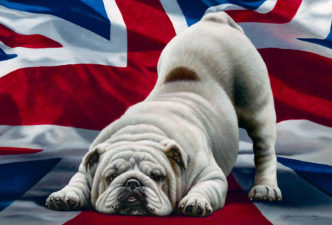 Jack, British Bulldog by Nigel Hemming