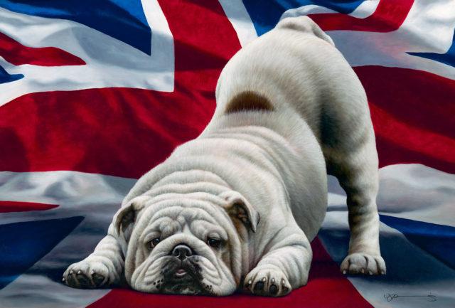 Jack, British Bulldog by Nigel Hemming