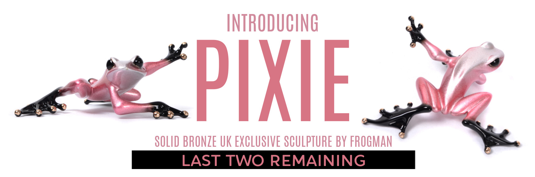 Banner Frogman Pixie only 2 left