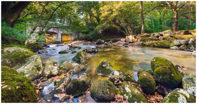 Autumn-at-Shaugh-Bridge-Paul Haddon