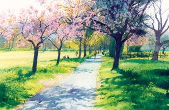 Richard Thorn Spring Meadow Walk Torre Abbey