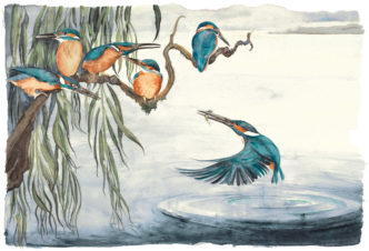The Lost Words - Kingfishers by Jackie Morris